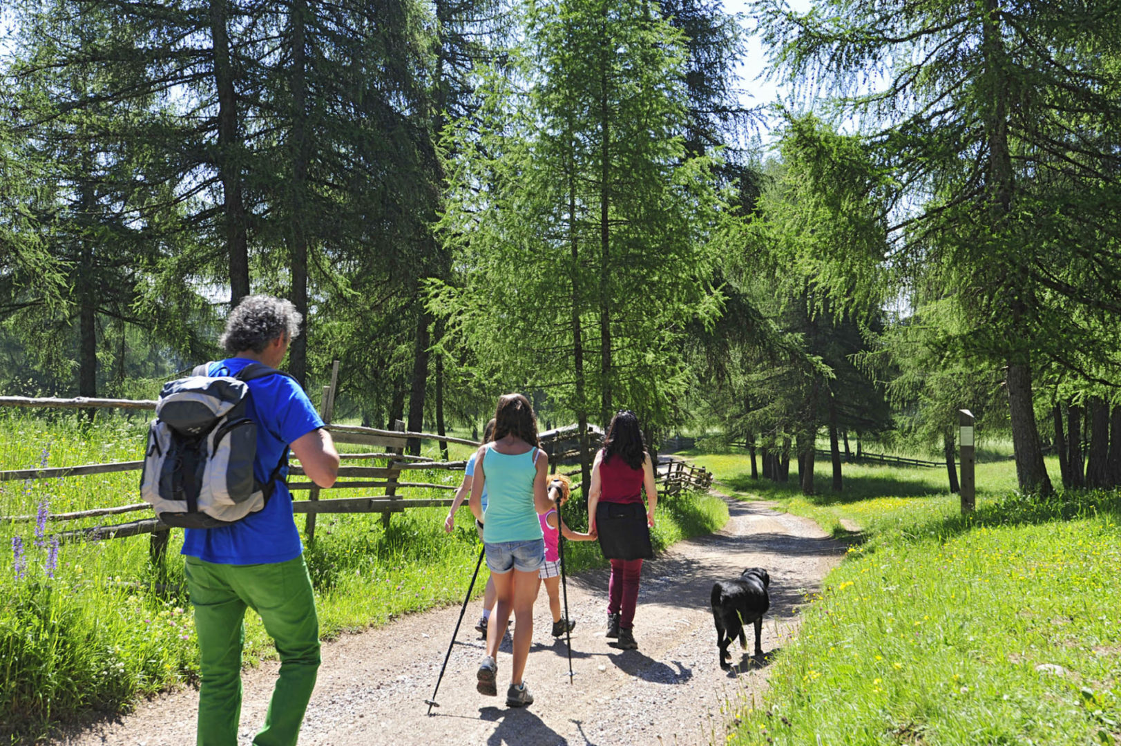 DSC8544 scaled - Wandern von Langfenn